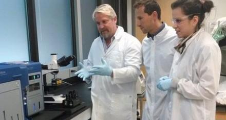 گوگل ردیاب تشخیص سرطان و حمله قلبی میسازد