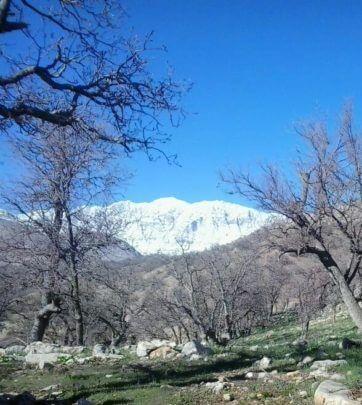 Photo of مناظری زیبا از دلی مهرجان